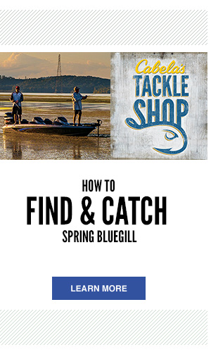 Tackle Shop - How to Find and Catch Spring Bluegill