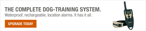 The complete dog-training system. - Shop Now